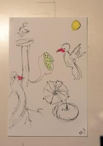 Birds 016
